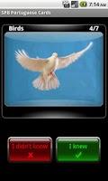 Screenshot of SPB Portuguese Cards