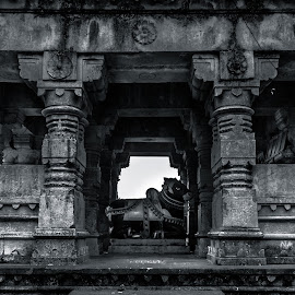 Mandap of Sanghameshwar Temple by Rohan Pavgi - Buildings & Architecture Statues & Monuments ( black and white, maharastra, corridor, architecture, old building, #ancient, hinduism, history, temple, sculptures, sculpture, hindu, india, historical, pune )