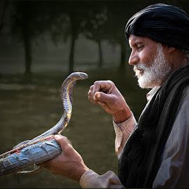 Snake Charmer by Nayyer Reza - People Street & Candids ( pakistan, snake, snake charmer, playful, color, jogi, playing with cobra, nayyer, reza, cobra )