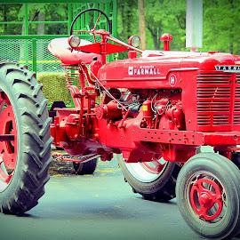 Hay ride by Sue Delia - Transportation Other ( ih, farmall, traktor, hay rides,  )