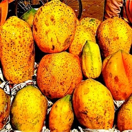 YELLOW MELONS  by Doug Hilson - Food & Drink Fruits & Vegetables ( colorful )