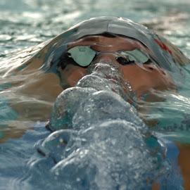 Oberbayerische Jahrgangsmeisterschaften Schwimmen 2005 by Peter Frank - Sports & Fitness Swimming ( oberbayerische meisterschaft, 2004/05, meisterschaft, sport, schwimmwn, 2004/2005 )