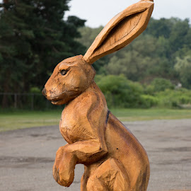 Whats up Doc ? by Michael Wolfe - Artistic Objects Other Objects ( rabbit, wood, carvings, art, treetrunk,  )