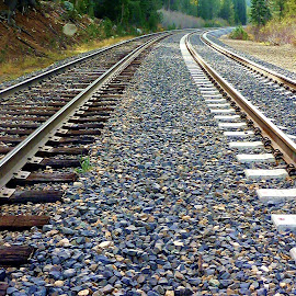 by Samantha Linn - Transportation Railway Tracks