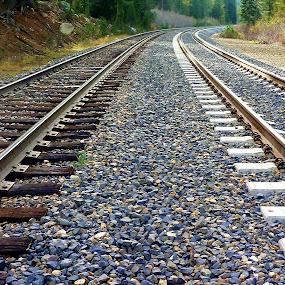 by Samantha Linn - Transportation Railway Tracks