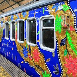 by Zaameedhearts Zahirshah - Transportation Trains