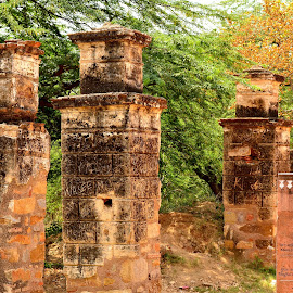 Ancient pillars by Mayank Kaushik - Buildings & Architecture Statues & Monuments ( tombs, mughals, old monuments, ancient pillars, mahals, india, delhi )