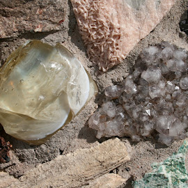 mixed minerals by Debbie Theobald - Nature Up Close Rock & Stone ( natural light, nature, arizona, unedited, rocks,  )