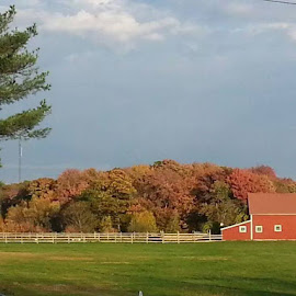 An Autumn Afternoon in Rhode Island by Sherry Carlson - Landscapes Prairies, Meadows & Fields ( afternoon, rhode island, foliage, farmhouse, autumn colors )