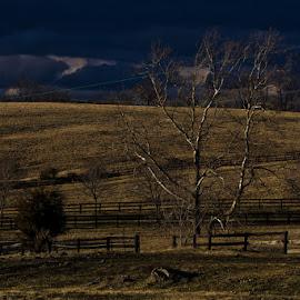 Salem Farm by Jim Miller - Landscapes Prairies, Meadows & Fields ( field, outdoor, weather, karst, storms, landscape, high contrast )