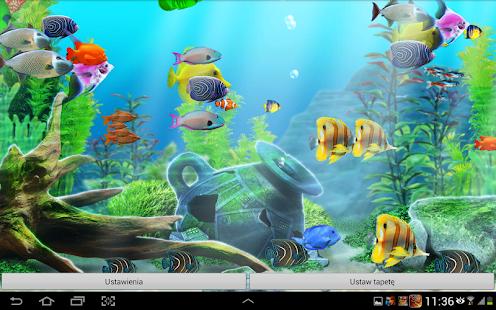 Download aquarium live wallpaper hd apk to pc download for Live fish games