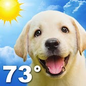 Free Weather Puppy APK for Windows 8