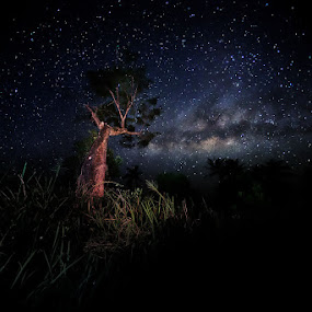 by Esmar Abdul Hamid - Landscapes Starscapes