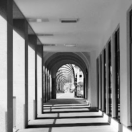 by Joachim Pfitzner - Buildings & Architecture Bridges & Suspended Structures