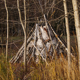 Wigwam by Tammy Drombolis - Buildings & Architecture Other Exteriors (  )