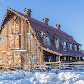 Winter Barn by Mark Prusiecki - Buildings & Architecture Other Exteriors ( farm, ranch, building, winter, barn, exterior )
