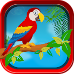 Wings Over The Beach APK Image