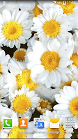Screenshot of Flowers Live Wallpaper