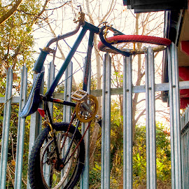 Creative Parking by Zoot The-Tog - Transportation Bicycles ( abstract, fence, creative, funny, unusual, imaginative, bicycle )