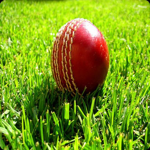 T20 Cricket LOGO-APP點子