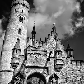 Castle by Andy Just Andy - Buildings & Architecture Public & Historical ( old, black an white, castle, medieval,  )