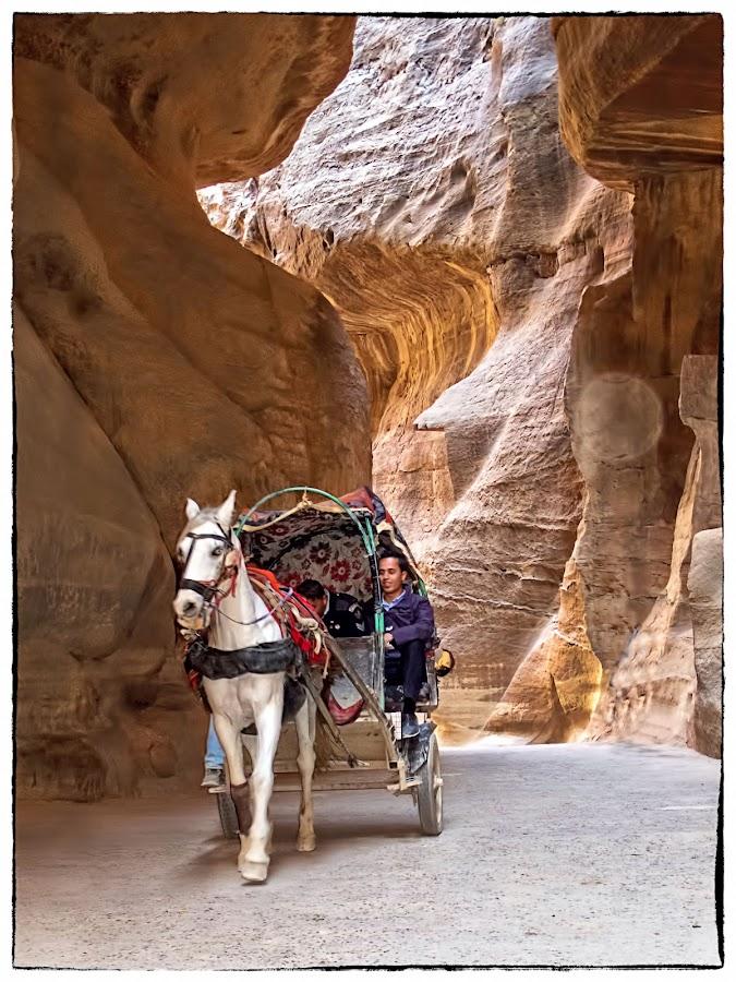 Petra by Francesca Riggio - Landscapes Caves & Formations ( jordan, caves, horse, man, petra )
