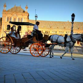 Sevilla by Diana Hacman Garcia - City,  Street & Park  City Parks
