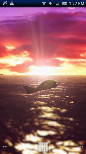 琥珀★Dolphin Ocean