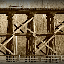 Railroad Days by Renee Burmer - Abstract Patterns ( old, pattern, railroad, antique, wv,  )