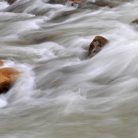 Rushing water by David Adamson - Nature Up Close Water ( abstract, zion national park, waterfalls, flowing water, blur )