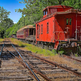 Eureka Springs Caboose by Ron Meyers - Transportation Trains