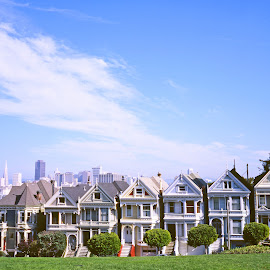 The Painted Ladies of Alamo Square by Alex Cassels - Buildings & Architecture Other Exteriors ( alamo square, california, buildings, travel, cityscape, san francisco, the painted ladies, alex cassels, united states, victorian houses )