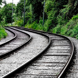 Tracks by Christine May - Transportation Railway Tracks ( train tracks, train, tracks, travel, transportation, photography,  )