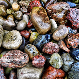 Mixed wet rocks by Marcellino Guarnero - Nature Up Close Rock & Stone ( colors, wet, rocks )