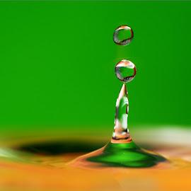 multicolor drops by Hale Yeşiloğlu - Abstract Water Drops & Splashes ( abstract, macro, waterdrop, drop, drops, waterdrops,  )