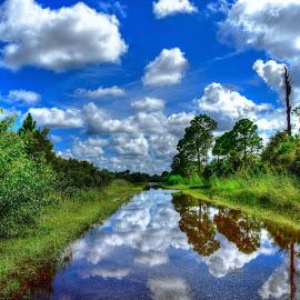 Rain Reflections by Mark Ayers-Stebenne - Landscapes Cloud Formations ( blue sky, flood, cloud porn, streets, rain )