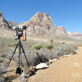 My cam by Thomas ST0LL - Landscapes Deserts (  )