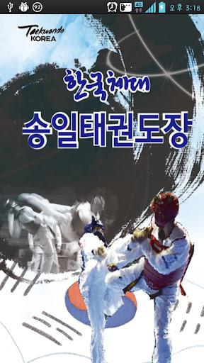 한국체대송일태권도장