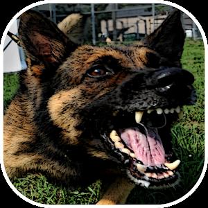 Angry Dog Barking Ringtone Free Download