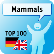 100 Mammals Keywords