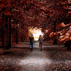 Autumn in the Park by John Phielix - Babies & Children Children Candids ( bicycles, park, gravel path, autumn, trees, leaves,  )