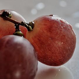 grape by Georgi Karastoyanov - Food & Drink Fruits & Vegetables ( fruit, grapes, food, grape, wallpaper, fruits, close up )