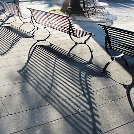 by Nicoletta Guyot Bourg - City,  Street & Park  City Parks ( public, bench, furniture, object )