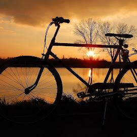 by Željko Salai - Transportation Bicycles