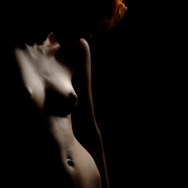 Shadows by Vineet Johri - Nudes & Boudoir Artistic Nude ( art nude, studio lighting for art nude, vkumar photography, beautuful nude girl, creative lighting, curves, shadows, katerina )