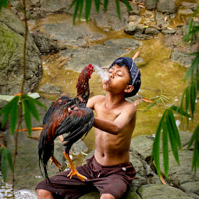 shower his chicken  by Sesar Arief - Babies & Children Child Portraits ( indonesian, children, traditional, culture, world,  )