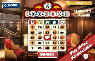 Screenshot of Total Bingo