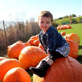 Pumpkin Sitting by Matthew Sisk - Babies & Children Toddlers ( child, girl, pumpkin, cute, toddler )