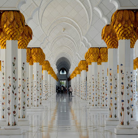 Grand Mosque by Sarath Sankar - Buildings & Architecture Places of Worship ( place of worship, architecture, people )