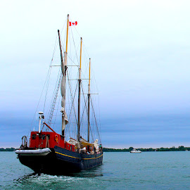 Setting Sail by Ronnie Caplan - Transportation Boats ( clouds, water, toronto, boat, lake ontario, sky, flag, sailing, wake, greenery, rigging, shoreline, masts,  )